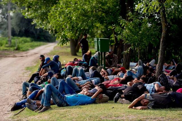 """ΟΥΓΓΑΡΙΑ: «Ποια ανθρωπιστική καταστροφή; Η συντριπτική πλειοψηφία των """"προσφύγων"""" είναι νέοι, έχουν πολλά χρήματα  έχουν συσκευές τελευταίας τεχνολογίας και δεν ζητούν βοήθεια», λέει ο πρόεδρος ανθρωπιστικής οργάνωσης."""
