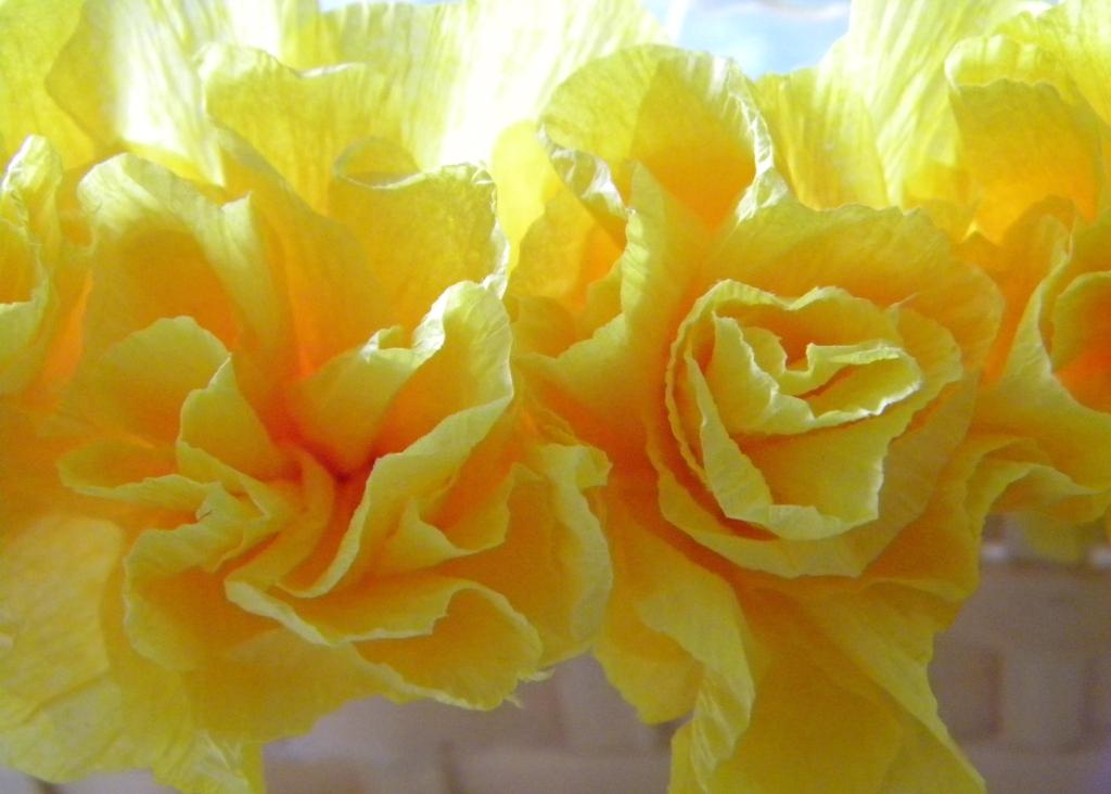 Inkling Crepe Paper Flowers