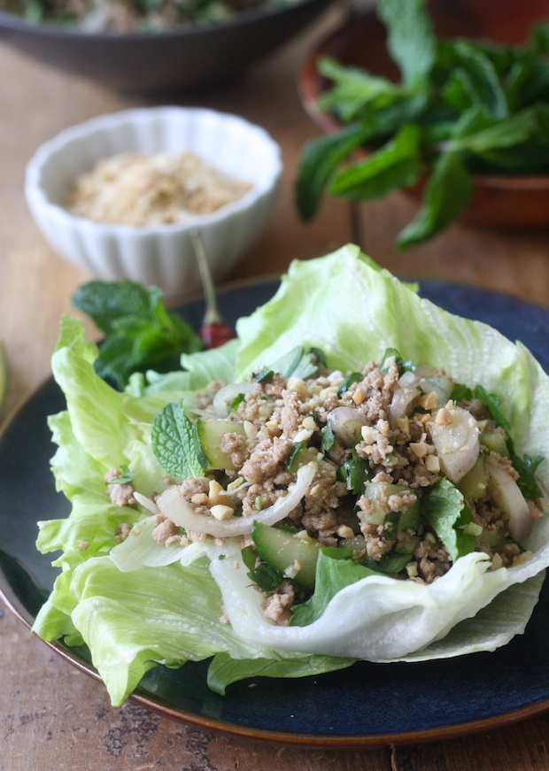 Thai larb recipe by SeasonWithSpice.com