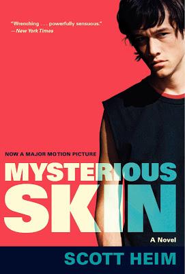 Vỏ Ngoài Bí Ẩn - Mysterious Skin