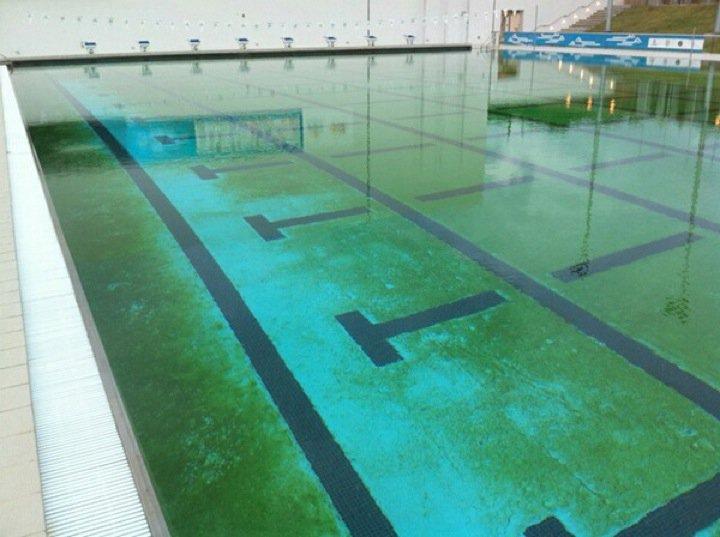 Agua y m s los cerramientos para piletas - Agua de la piscina turbia ...