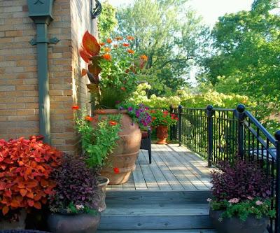 como-decorar-patios-pequeños