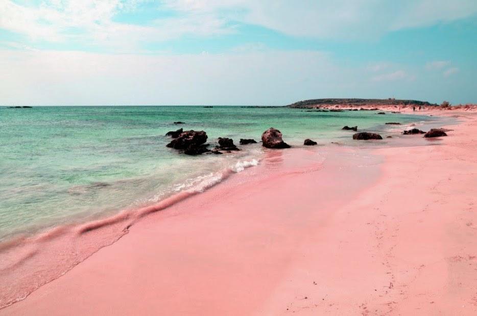 plages rose