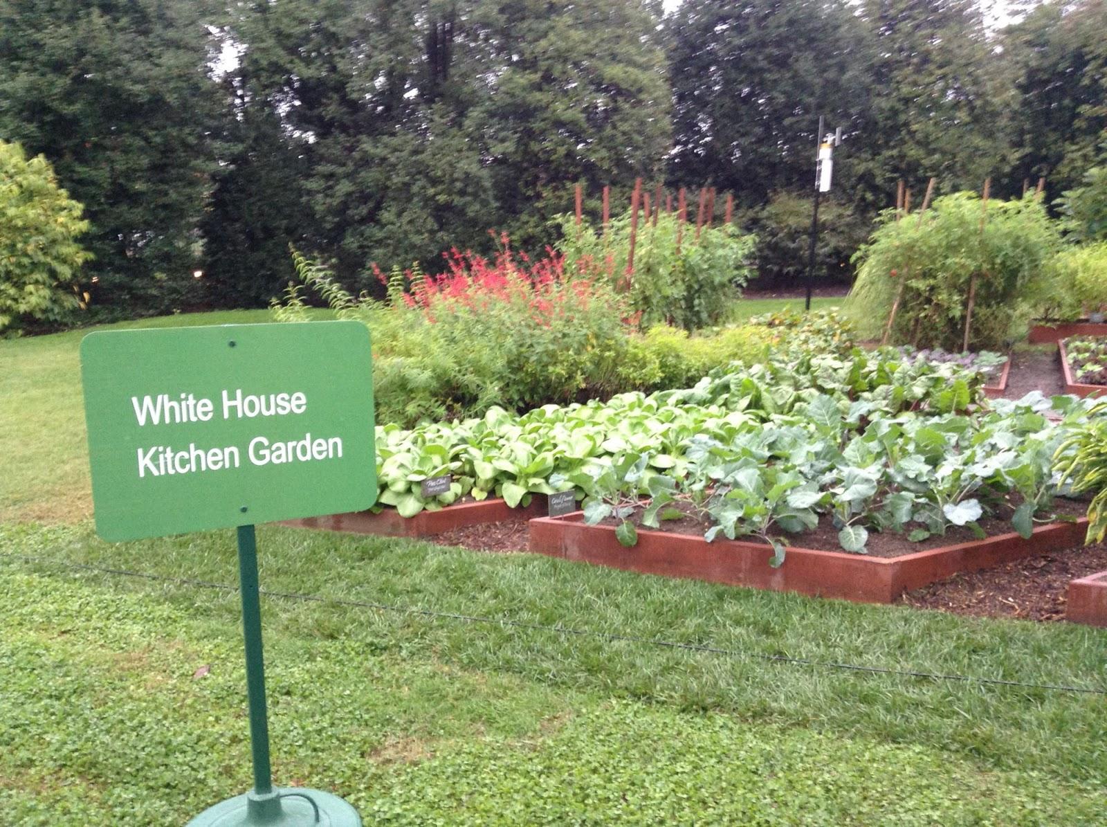 My Homemade Iowa Life: White House fall garden tour