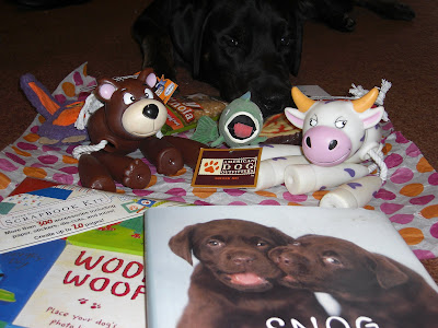 Picture of all the wonderful things Addie, Lucy an Hailey sent us - a doggy style scrapbook, a cute dog book, many toys for Rudy and some doggy treats. Rudy is laying down behind the toys