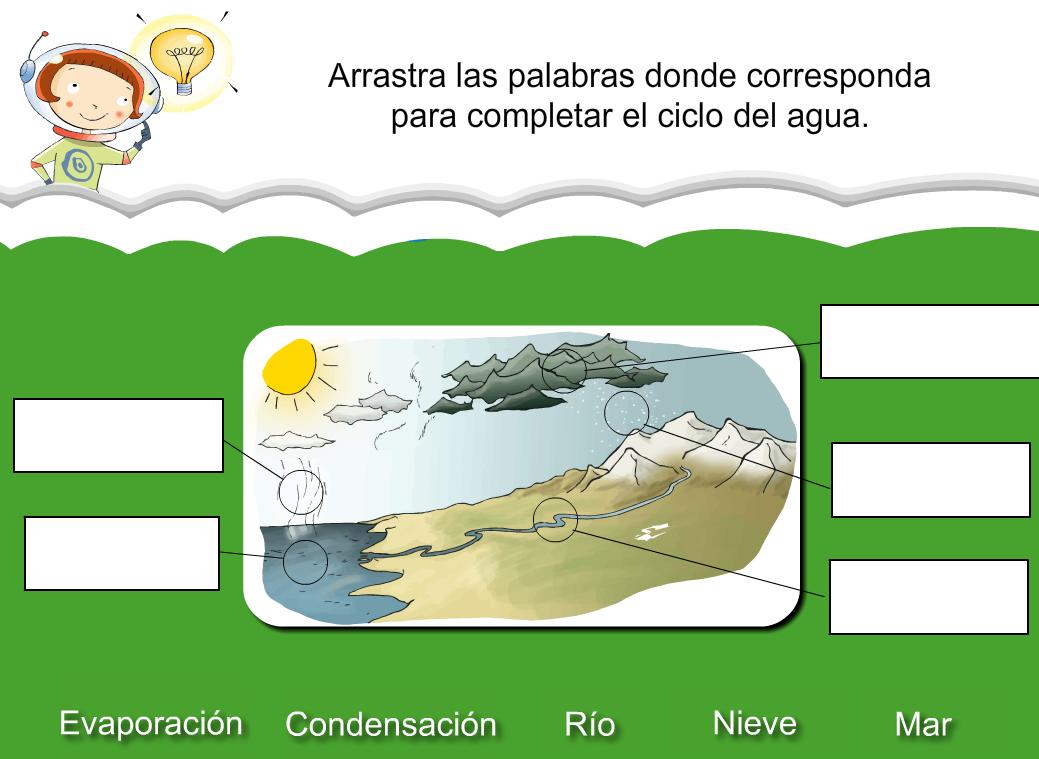 http://www.primerodecarlos.com/SEGUNDO_PRIMARIA/julio/activi_bromera/natura2/8/Natura2-U8-A2_cas.swf