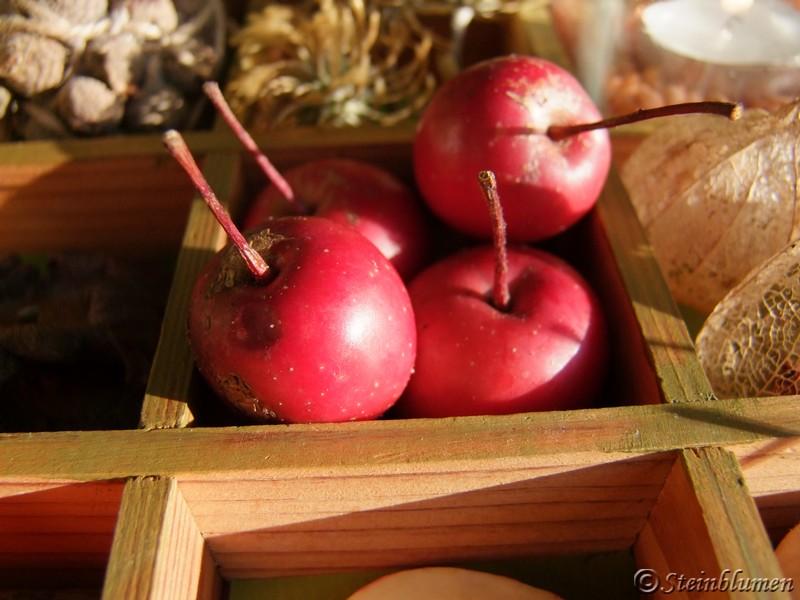 Zieräpfel dekorieren