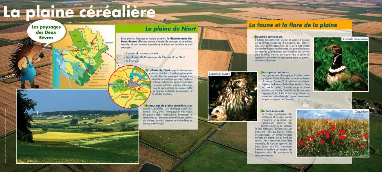 Poitou Charente 1
