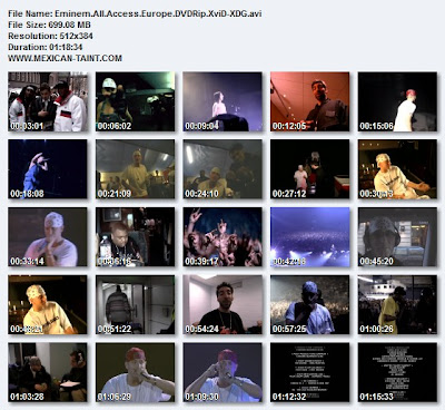 Eminem.All.Access.Europe.DVDRip.XviD-XDG
