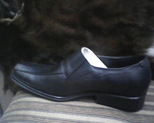 Gesunde Shoes BALLY 056