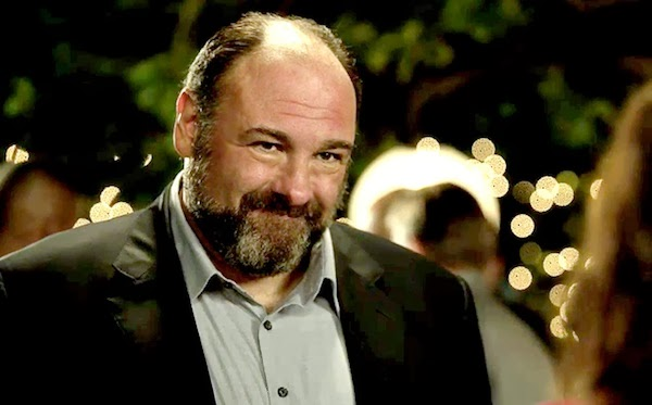 James Gandolfini in Enough Said.