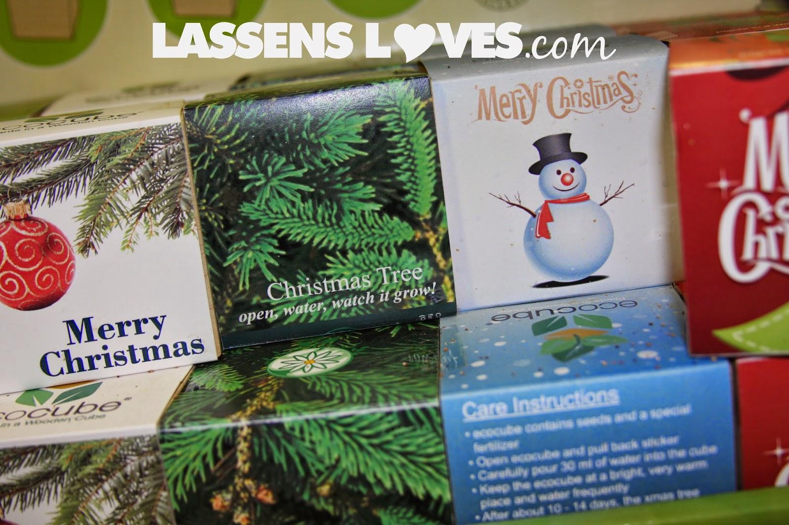 stocking +stuffers, grow+kits