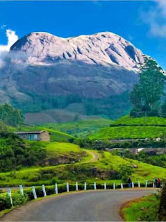 Munnar (Best Honeymoon Destinations In India) 1
