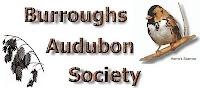 Burroughs Audubon Strikes Again
