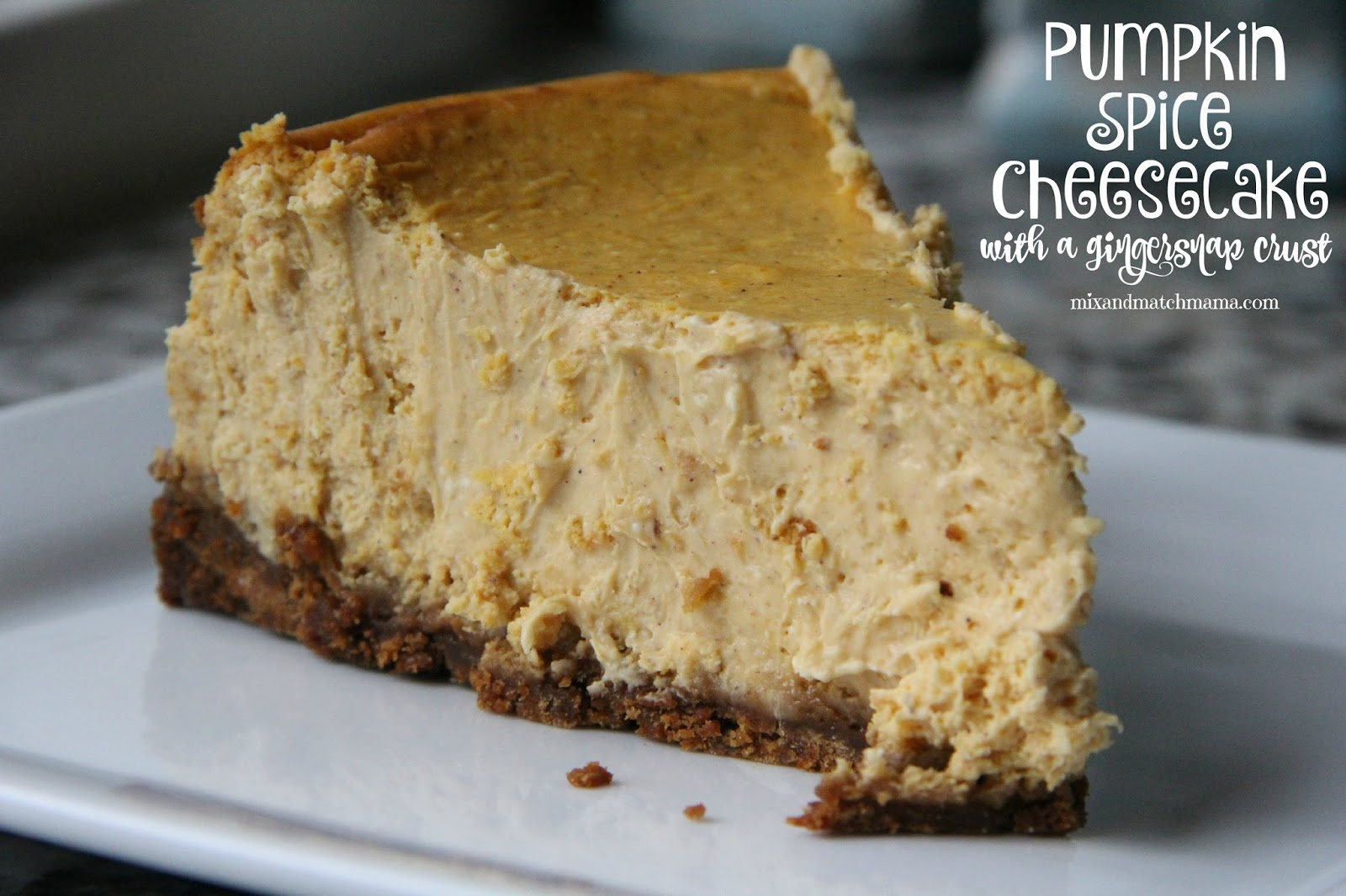 Pumpkin Spice Cheesecake with a Gingersnap Crust! | Mix ...