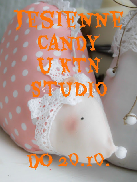 Candy w KTN Studio