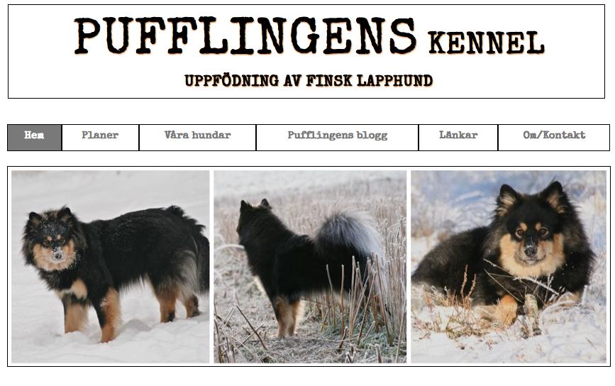 Pufflingens hemsida: