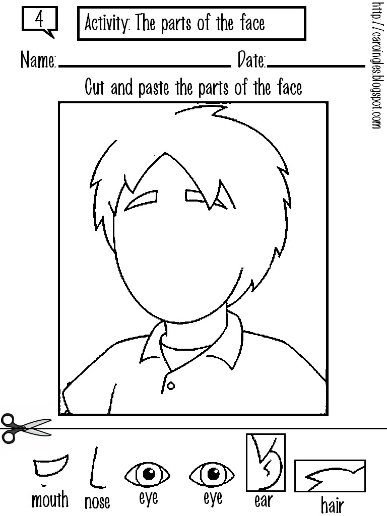 Face Body Parts Worksheets