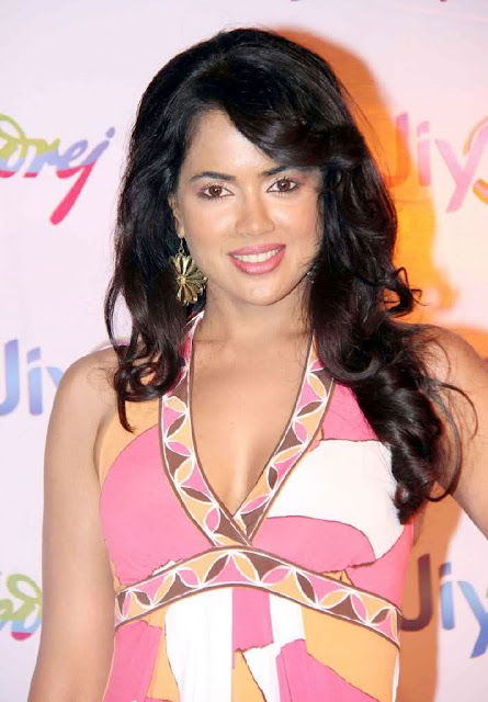 Sameera Reddy at GoJiyo Anniversary Celebration Stills