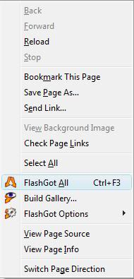 Flashget Free Download Manager freeware options