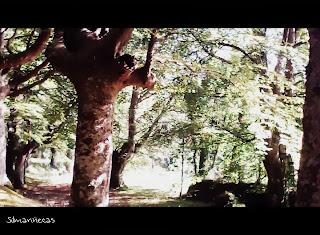 Santuario de Urkiola - Hacia la ermita de Santa Apolonia-