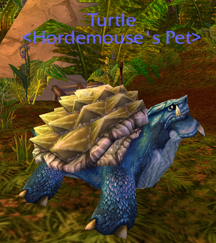 wow petopia community view topic blue turtle needs a name