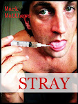 STRAY, the novel, on Amazon