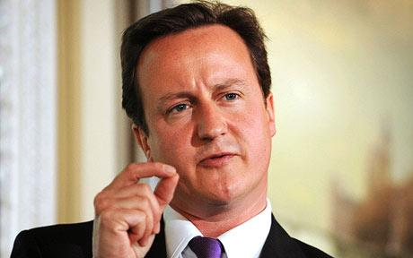 David-Cameron-460_785047c.jpg