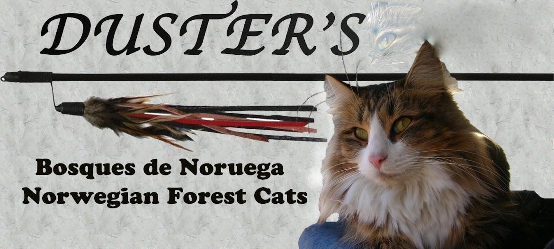 Bosques de Noruega Duster's nfo