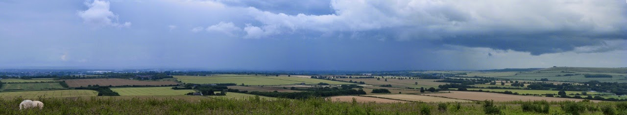 View west from Avebury Down