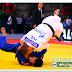 CAMPEONATO DEL MUNDO SENIOR - PARIS 2011.<BR>La Galería de los judokas españoles por Osotogabi.