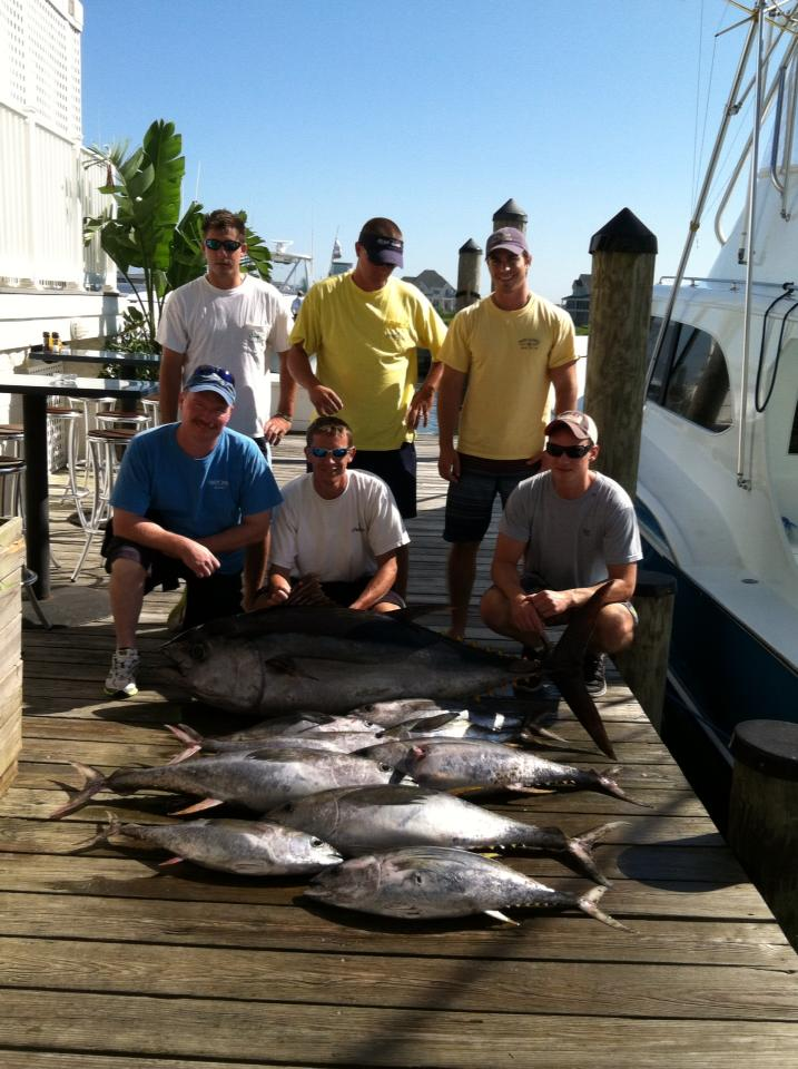 Big eye are here 07 06 13 daily reports news ocean for Ocean city fishing center