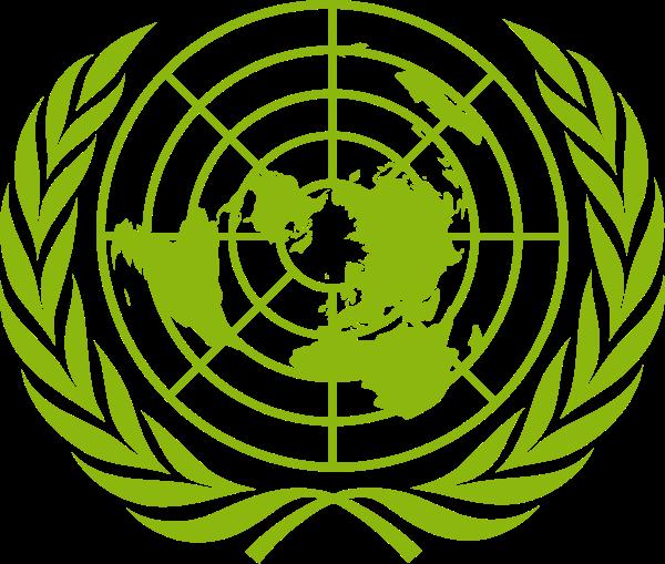 Organização das Nações Unidas no Brasil
