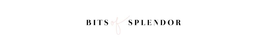 Bits of Splendor