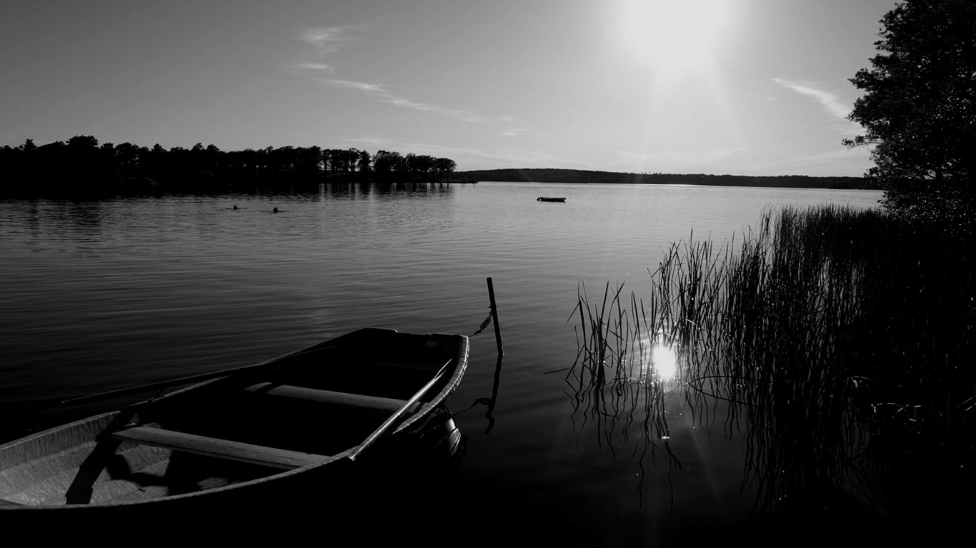 best nature image collection classy black and white nature picture