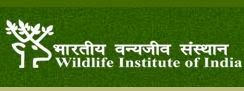 Wildlife Institute of India Image