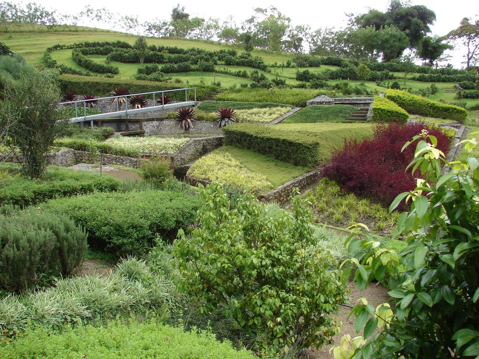 Paisajismo pueblos y jardines las coberturas los for Paisajismo jardines fotos