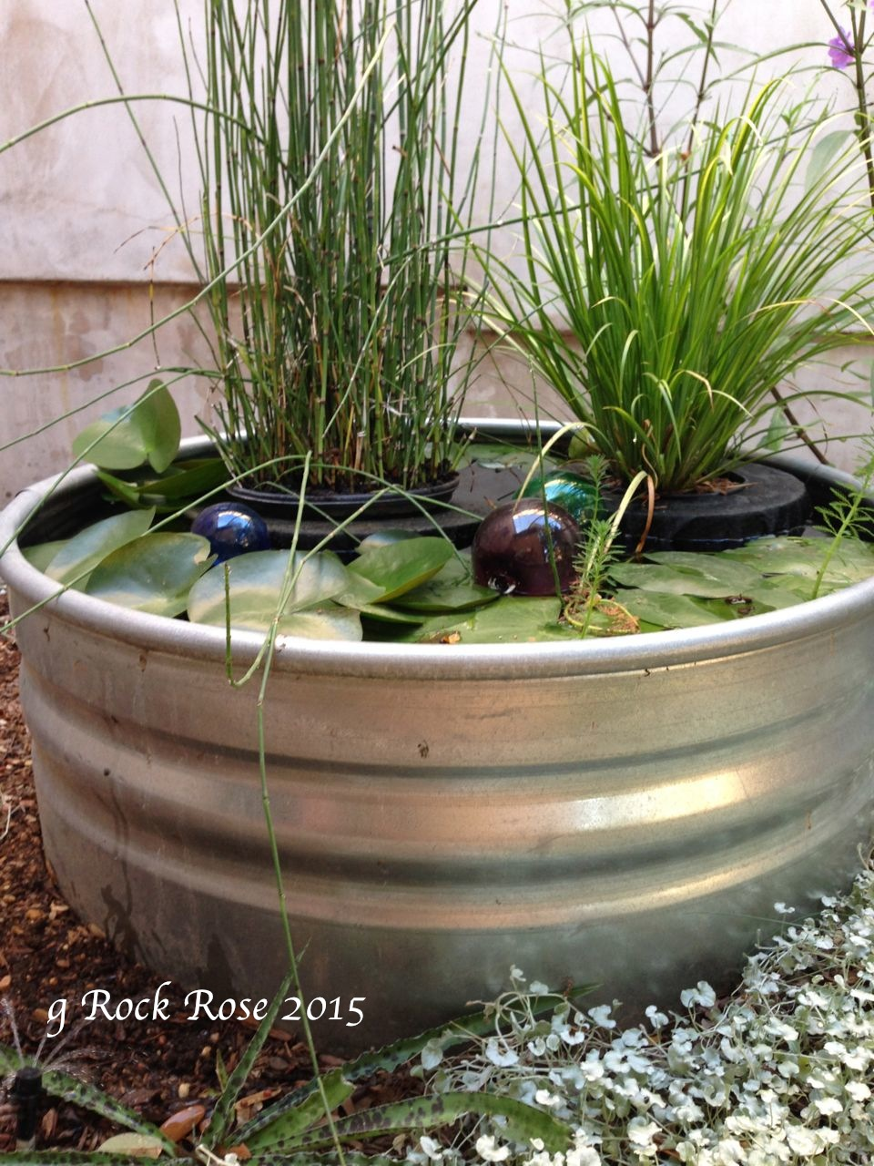 Rock rose do you want to make a floating planter for your for Floating plant pots