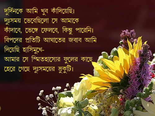 bangla quotes about friends submited images