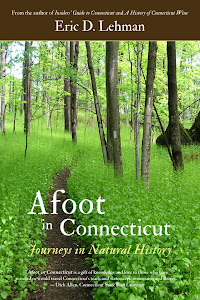 Afoot in Connecticut
