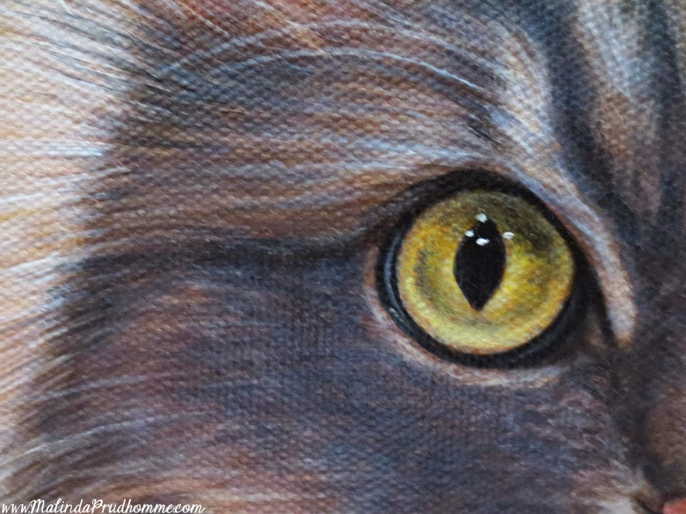 cat portrait, pet portrait, cat painting, pet painting, custom cat portrait, custom portrait, custom pet portrait, toronto artist, portrait painting, malinda prudhomme, grigia, grey cat, cat eyes