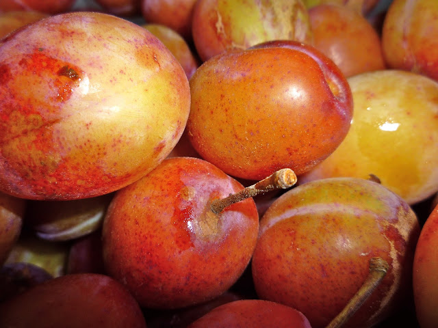 plums via lovebirds vintage