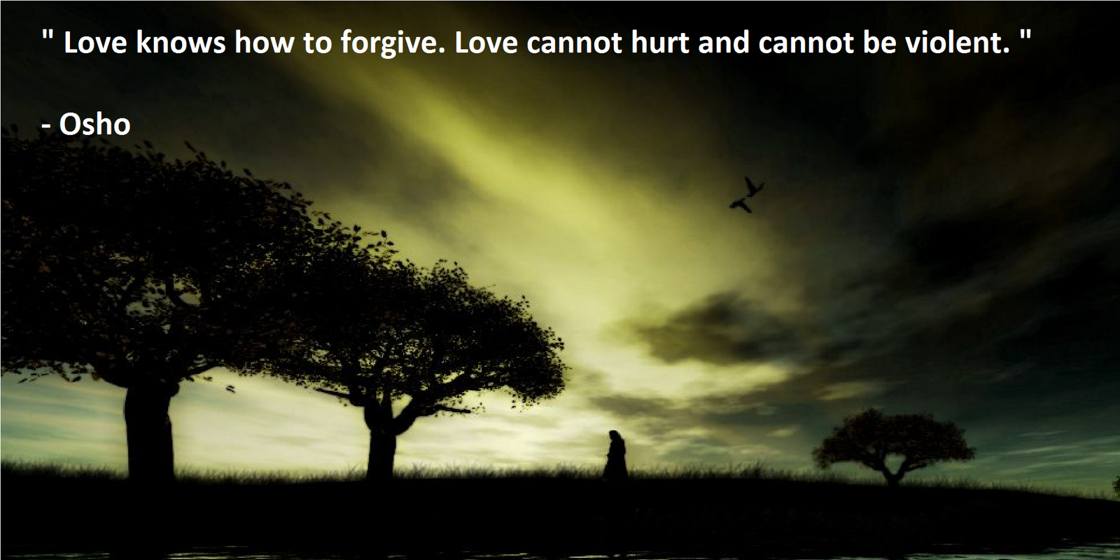 osho quotes on love quotesgram