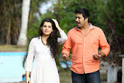 Chocolate movie photos gallery-thumbnail-5