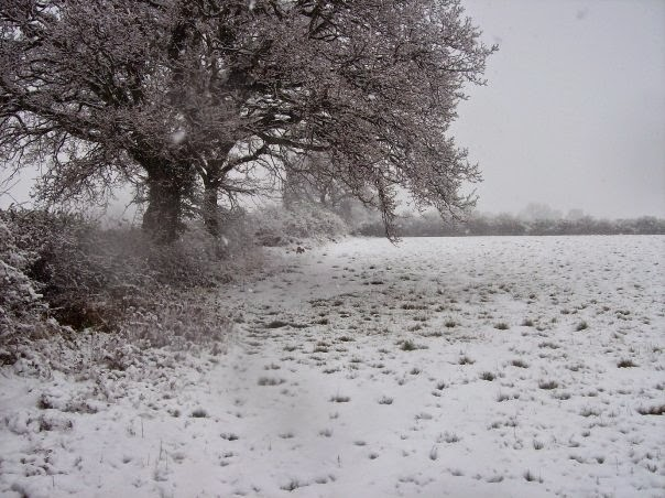 Friars Oak Fields snow 2