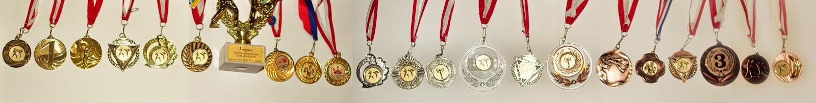 medale, złoto, srebro, brąz, puchar w Nowogrodzie Bobrzańskim