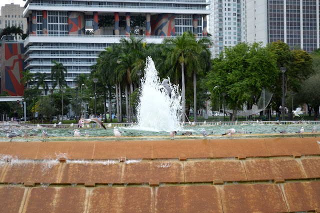 fountain with pigeons at the port of miami