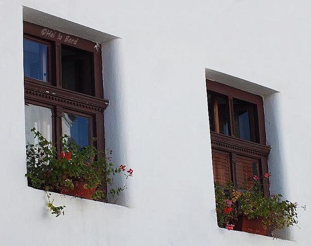 ferestre cetatuia brasov