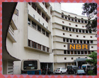 Assistant Revenue Officer in National Board of Revenue