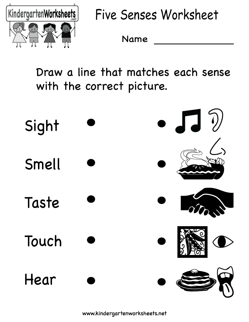 {Five Senses Worksheet – 5 Senses Kindergarten Worksheets